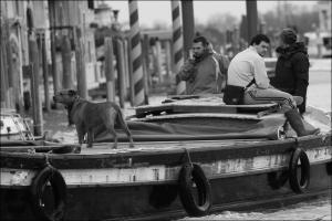 cane e barca